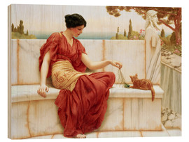 Wood print  The Favourite - John William Godward
