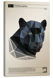 Canvas print  fig6 Polygonpanther Poster - Labelizer