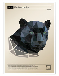 Premium poster fig6 Polygonpanther Poster