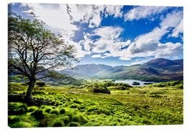 Canvas print  Lake of Killarney - Daniel Heine