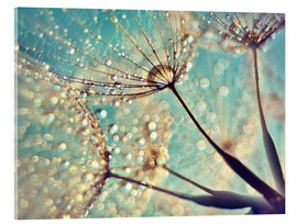 Acrylic glass  Magical Dandelion - Julia Delgado