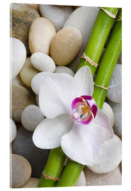 Acrylic glass  Bamboo and orchid - Andrea Haase Foto
