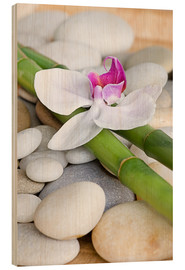 Wood print  Bamboo and orchid II - Andrea Haase Foto