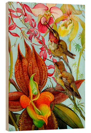 Wood print  Exotic Birds on Orchids