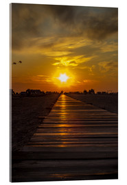 Acrylic print  Evening sun in St Peter Ording on the North Sea - Dennis Stracke