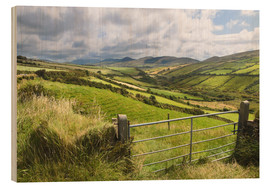 Wood print  Green meadows near Dingle (Kerry, Ireland) - Christian Müringer