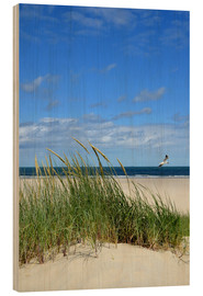 Wood print  Dune with seagull - Susanne Herppich