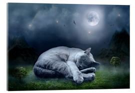 Acrylic print  Cat dreams at full moon - teddynash
