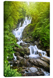 Canvas print  Torc Waterfall - Felix Pergande