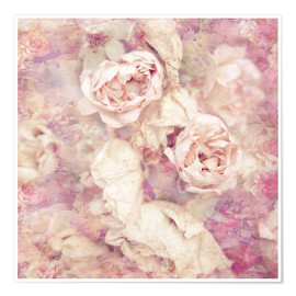 Premium poster  Faded roses - INA FineArt