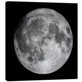 Canvas print  Full Moon - Roth Ritter