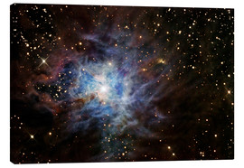 Canvas print  The Iris Nebula - R Jay GaBany