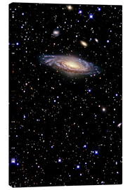 Canvas print  Spiral galaxy in the constellation Pegasus - R Jay GaBany