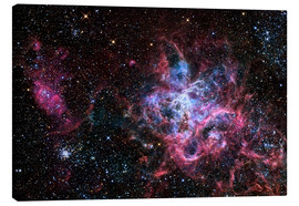 Canvas print  The Tarantula Nebula - R Jay GaBany