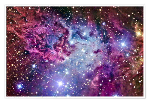 Premium poster The Fox Fur Nebula