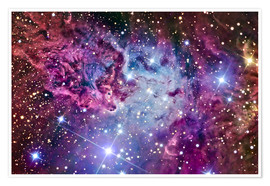 Premium poster  The Fox Fur Nebula - R Jay GaBany