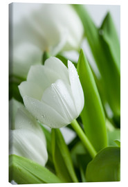 Canvas  White Tulips 02 - Nailia Schwarz