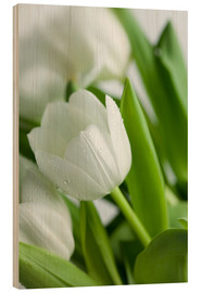 Wood print  White Tulips 02 - Nailia Schwarz