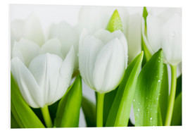 Foam board print  White Tulips 04 - Nailia Schwarz