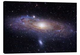 Canvas print  Andromeda galaxy - Robert Gendler
