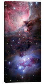 Canvas print  The Sword of Orion - Robert Gendler