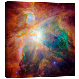 Canvas  The Orion Nebula - Stocktrek Images