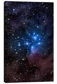 Canvas print  The Pleiades - Roth Ritter