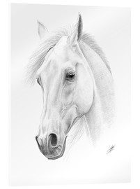 Acrylic print  Horse drawing - Christian Klute