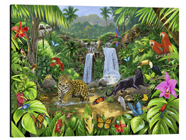 Aluminium print  Rainforest harmony - Chris Hiett