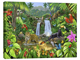 Canvas print  Rainforest harmony - Chris Hiett