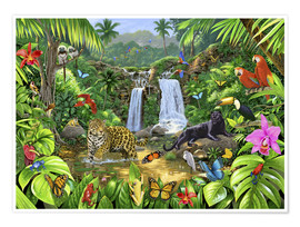 Poster  Rainforest harmony - Chris Hiett