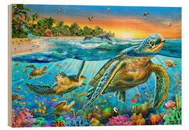 Adrian Chesterman - Underwater turtles