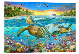 Foam board print  Turtle Cove - Adrian Chesterman