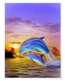 Premium poster Sunset dolphins