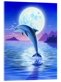 Acrylic print  Day of the dolphin - midnight - Robin Koni