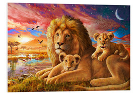 Foam board print  Lion Sunrise - Adrian Chesterman