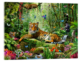 Acrylic print  Tiger in the jungle - Adrian Chesterman