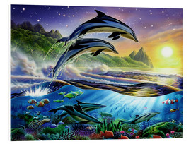 Foam board print  Atlantic dolphins - Adrian Chesterman