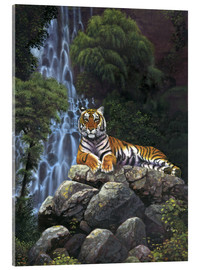 Acrylic glass  Tiger waterfall - Chris Hiett