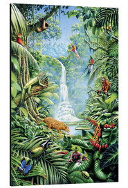Aluminium print  Save the rainforest - Gareth Williams