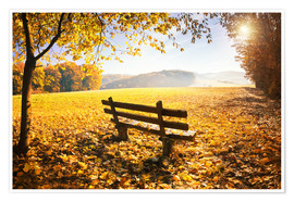 Premium poster Golden autumn forest with sunlight
