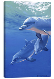 Canvas print  Happy dolphins - Graeme Stevenson