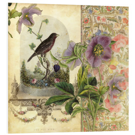 Foam board print  The Pet Bird - Aimee Stewart