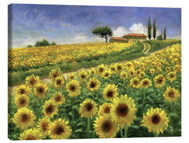 Canvas print  Sunflower - Jay Hurst