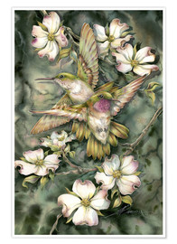 Premium poster Hummingbirds and flowers