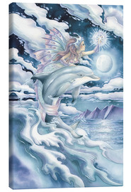 Canvas print  Wish upon a dolphin star - Jody Bergsma