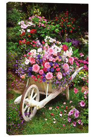 Canvas print  Garden Flowers - Simon Kayne
