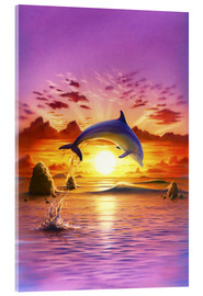 Acrylic glass  Day of the dolphin - sunset - Robin Koni