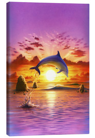 Canvas print  Day of the dolphin - sunset - Robin Koni