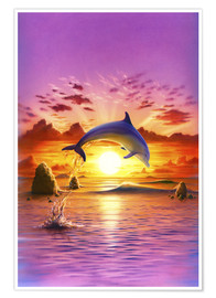 Premium poster  Day of the dolphin - sunset - Robin Koni